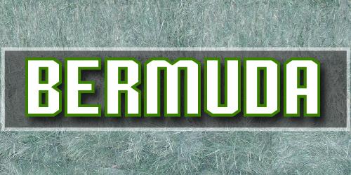 bermuda-01